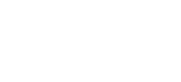 dwm tax service